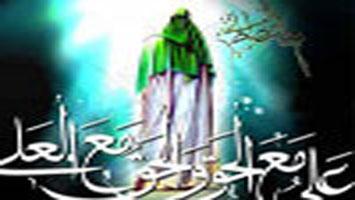 امام محمد تقی علیہ السلام کی سیاسی سیرت